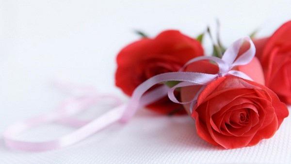 """Bộ ảnh đẹp chủ đề """"hoa"""" dùng để gửi lời chúc đến phái nữ trong ngày 8/3 - 5"""