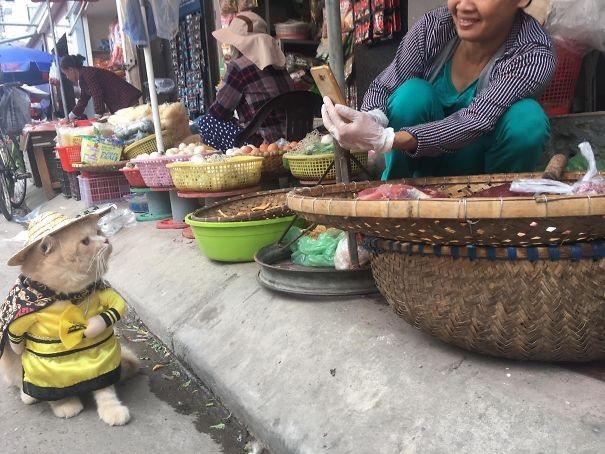 Chú mang lại niềm vui cho cả khu chợ, khiến các tiểu thương thích thú