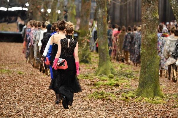 Show diễn thời trang giữa khu rừng - 7