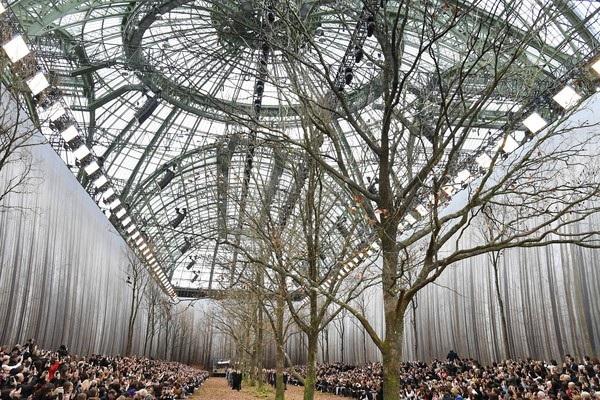 Show diễn thời trang giữa khu rừng - 13