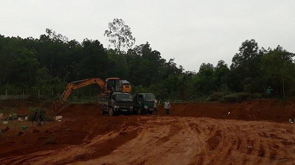 Diện tích lớn đất nhà ông Quách Văn Triệu đã được khai thác mang bán