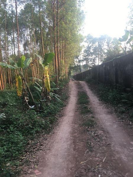 Khu vực bãi tập kết đất thải hàng chục nghìn m2 nhưng hề có đất được đưa về.