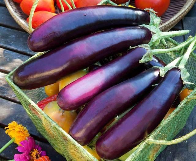 9 lợi ích không ngờ của cà tím - 2
