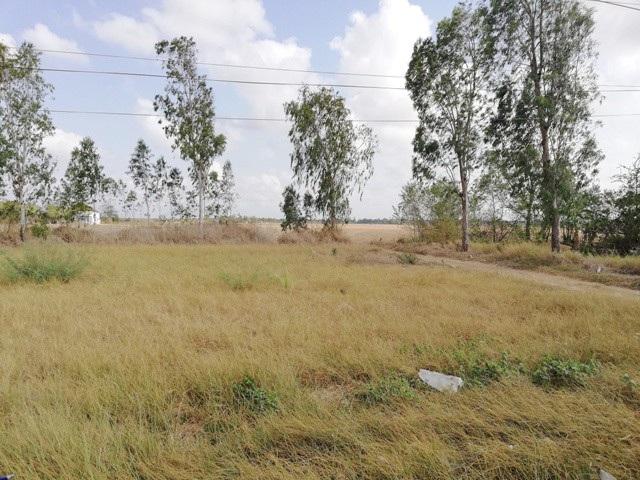 Khu đất dự kiến sẽ làm bãi đậu xe chùa Hưng Thiện rộng hàng ngàn mét vuông.