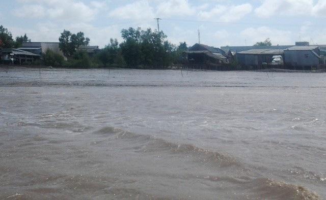 Sông nước ở Cà Mau. (Ảnh minh họa)