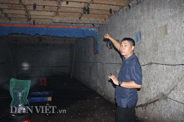 Anh Võ giới thiệu cho PV những tổ yến trong căn nhà của mình. Ảnh: Văn Long.
