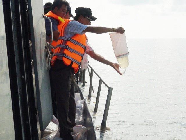 Thả tôm giống xuống vùng biển Bạc Liêu để tái sinh nguồn lợi thủy sản. (Ảnh: Quốc Quý)