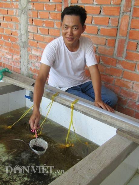 Anh Nguyễn Thanh Tân giới thiệu về mô hình ươm nuôi lươn giống.