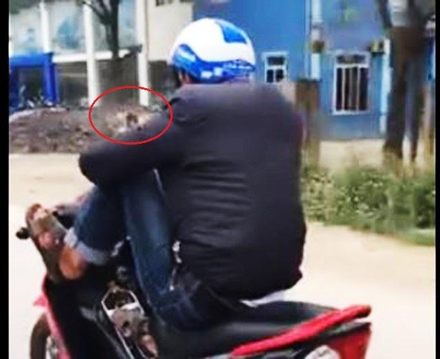 Nam thanh niên bấm điện thoại khi điều khiển xe bằng hai chân lưu thông trên đường (ảnh cắt từ clip)