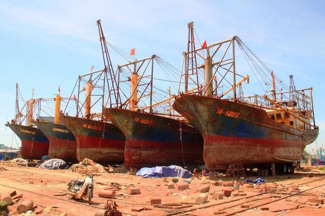 Hình ảnh 5 tàu vỏ thép của Công ty TNHH Đại Nguyên Dương đóng cho ngư dân Bình Định phải nằm bờ sửa chữa trước đó.