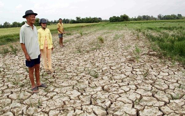 Đồng bằng sông Cửu Long chịu tác động tiêu cực do nguồn nước Mekong suy kiệt