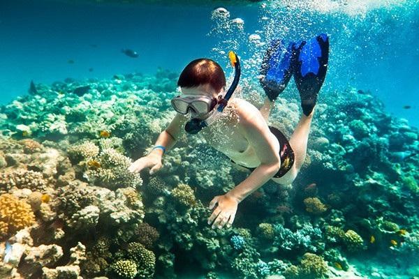 Du khách thích thú trải nghiệm lặn ngắm san hô - Ảnh: I.T