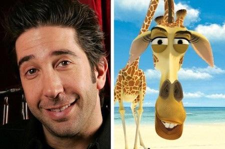 """Nếu bạn cảm thấy chú hươu cao cổ Melman trong """"Madagascar"""" có chút thân quen khó tả thì xin bật mí cho bạn biết rằng Melman thực chất được lấy cảm hứng từ nam diễn viên David Schwimmer, người nổi tiếng với bộ phim """"Friends"""""""