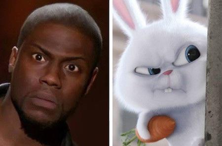"""Hầu hết biểu cảm hài hước của Kevin Hart đều được chú thỏ Snowball trong phim """"The secret life of pets"""" tái hiện hoàn hảo"""