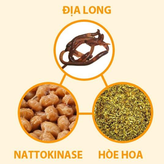 Địa long, hòe hoa và nattokinase là 3 dược liệu giúp hạ huyết áp