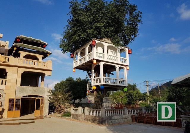 Ngôi nhà kỳ lạ trên cây của ông Nguyễn Văn Phúng tại Nha Trang. Ảnh: Viết Hảo