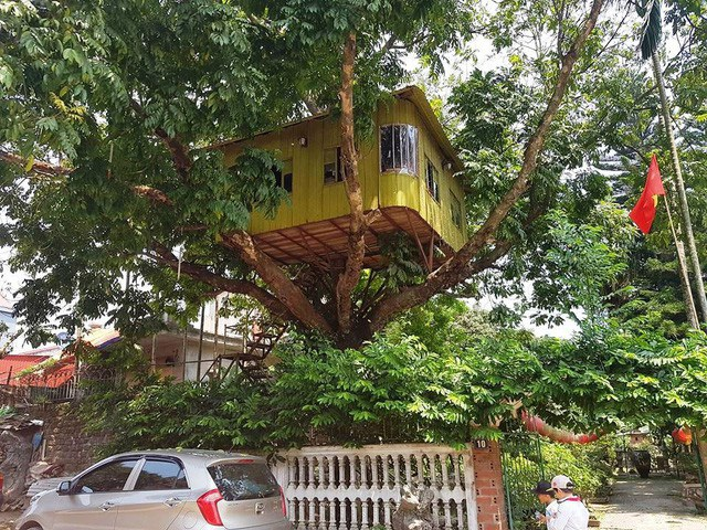 Ngôi nhà nằm trên ngọn cây được làm bằng khung sắt và gỗ, mái tôn. Ảnh: Thái Bá