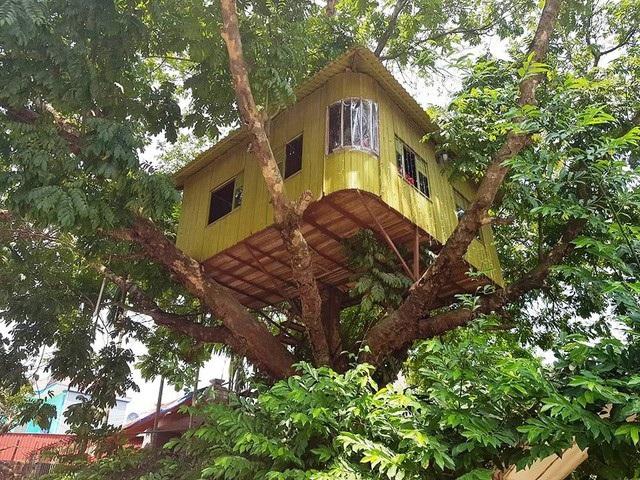 Ngôi nhà được xây dựng khá độc đáo. Ảnh: Thái Bá