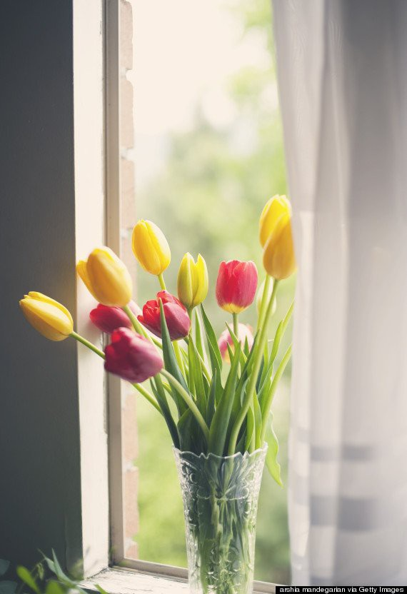 Ban ngày nắng nóng chớ nên mở cửa sổ để khí nóng vào nhà.