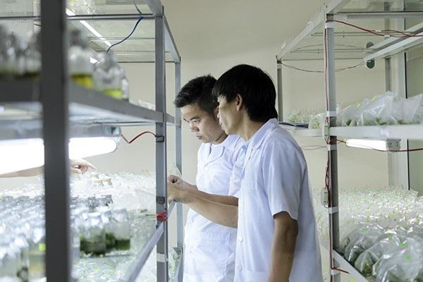 Nghiên cứu tại Viện Công nghệ Sinh học - Đại học Huế