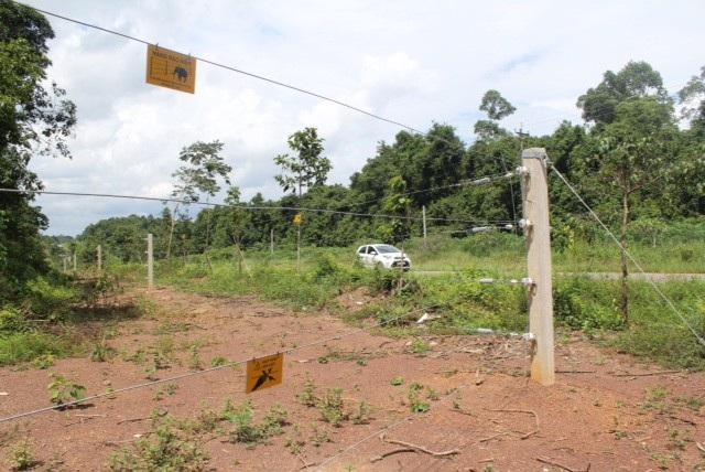 Hàng rào điện bảo vệ voi.