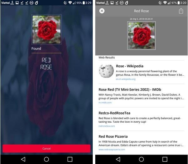 Tương tự ứng dụng nhận diện được bông hoa trong ảnh là hoa hồng và đưa ra kết quả tìm kiếm