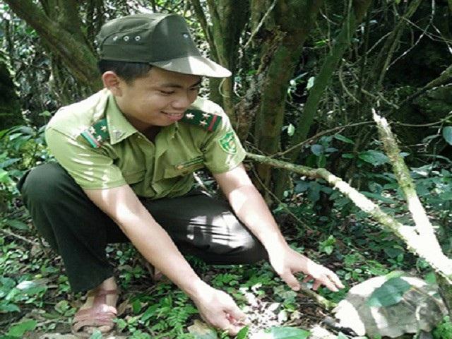 Tính từ đầu năm 2018 đến nay, đã có 39 cá thể động vật hoang dã được thả về môi trường tự nhiên tại VQG Phong Nha - Kẻ Bàng