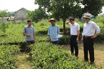 Cuối năm 2017, Thành phố Thái Nguyên là đơn vị cấp huyện đầu tiên của tỉnh Thái Nguyên hoàn thành nhiệm vụ xây dựng nông thôn mới với 8/8 xã đã đạt 19 tiêu chí xã nông thôn mới.
