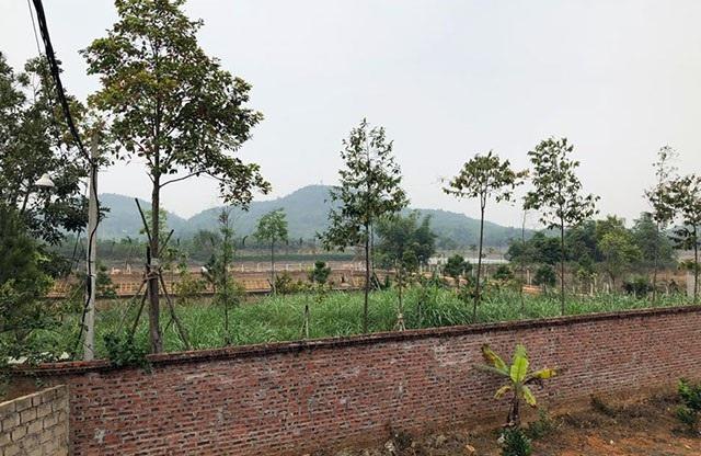 Nhiều hộ xây trang trại trên đất nông lâm trường ở huyện Ba Vì