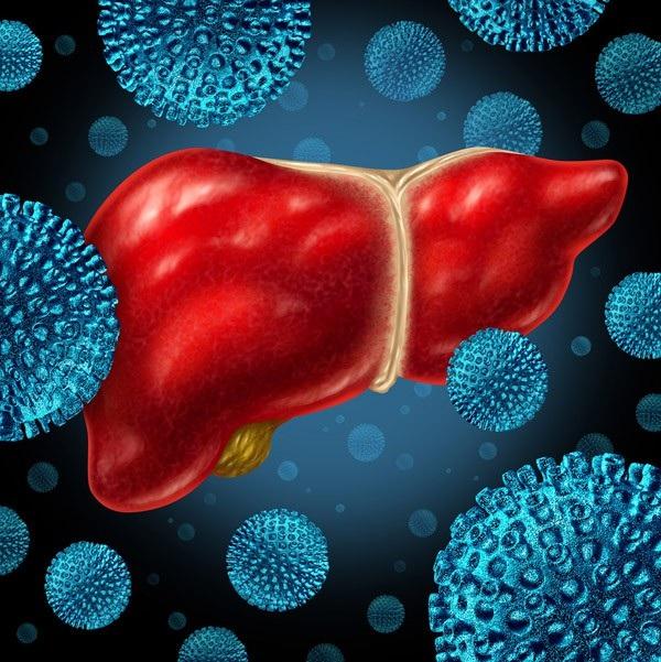 Nhiễm virus viêm gan B, C mạn tính làm tăng nguy cơ ung thư gan gấp 200 lần so với người không nhiễm bệnh.