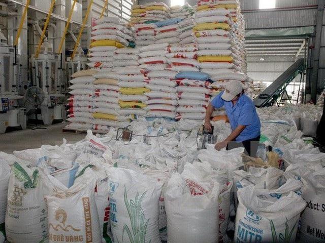 900 tấn gạo được Chính phủ cấp xuất cứu đói mùa giáp hạt cho Thanh Hóa và Yên Bái (ảnh minh họa)