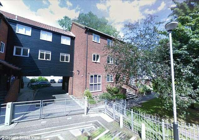 """Hàng xóm của cô Heather Webb phàn nàn rằng cô hát quá to mà giọng hát lại như… """"mèo kêu"""". Cô Heather sống ở căn hộ tầng trệt trong một khu tập thể ở thành phố Norwich (Anh)."""