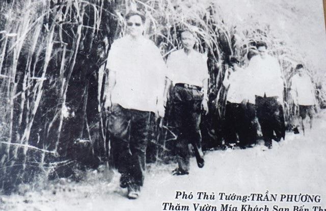 Phó Thủ tướng Trần Phương thăm vườn mía bà Liên và cán bộ, nhân viên Cửa hàng Bến Thủy tăng gia từ đất bỏ hoang (ảnh chụp lại)