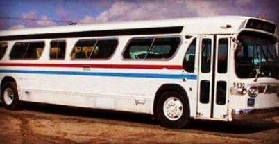 Người phụ nữ dành 3 năm biến xe buýt thành ngôi nhà lưu động tuyệt đẹp - 2