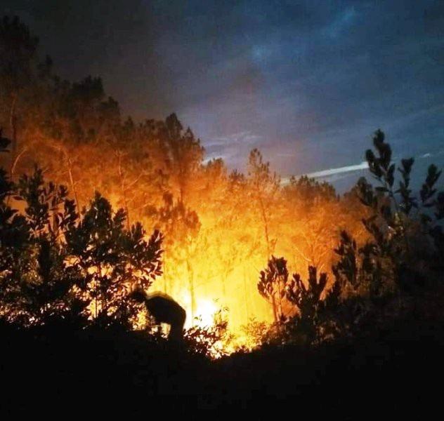 Đám cháy lớn xảy ra giữa trưa, nhanh chóng lan rộng do thời tiết nắng nóng, gió mạnh.