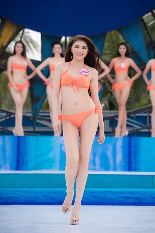 Cơ quan quản lý đang lấy ý kiến về việc bỏ phần thi bikini tại các cuộc thi sắc đẹp trong nước.