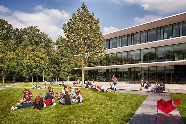 Du học Hà Lan chỉ với học phí từ 0 - 100 triệu đồng/năm - 2