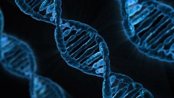 Lập trình tự gen giúp các nhà khoa học khai thác đất để sản xuất kháng sinh - 1