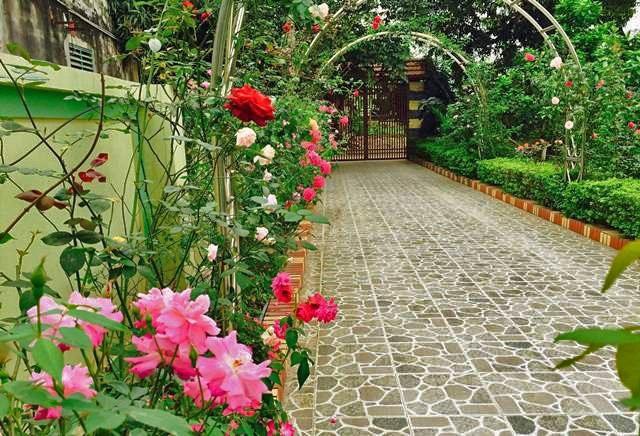 Hai bên cổng đủ các loại hoa.
