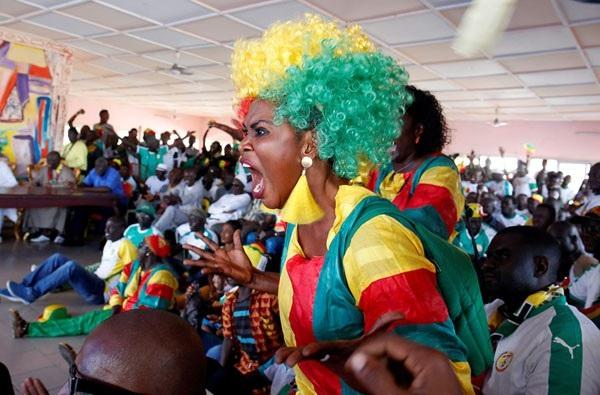 Phản ứng của một cổ động viên người Senegal khi đội nhà gặp Hàn Quốc tại loạt trận cuối cùng bảng H.