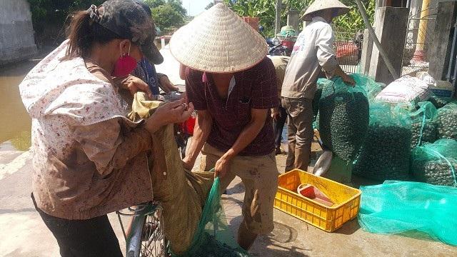 Ninh Bình: Những phận đời vật vã mưu sinh dưới nắng nóng 40ºC - 6