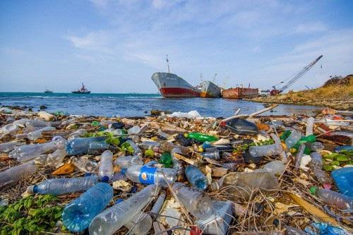 Tổng cục Biển và Hải đảo làm đầu mối về quản lý rác thải nhựa đại dương - Ảnh 1.