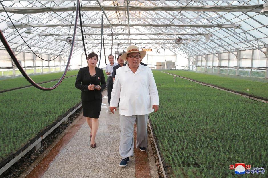 Nhà lãnh đạo Triều Tiên thị sát một cơ sở ươm giống cây tại tỉnh Kangwon.