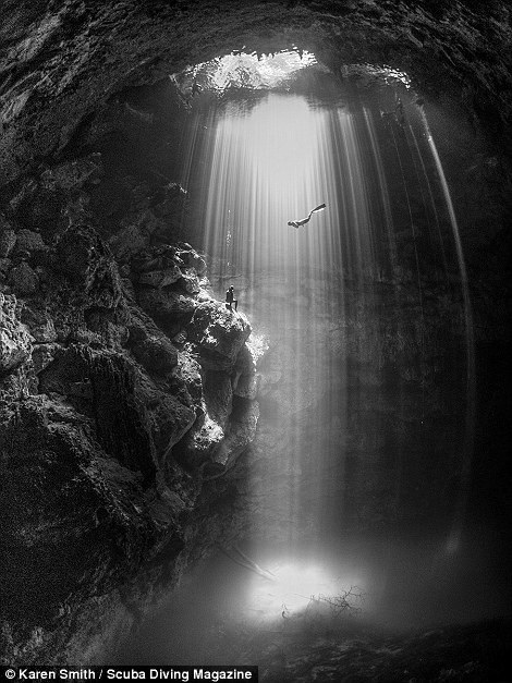 Thổi bay tâm trí với những bức ảnh chiến thắng trong cuộc thi ảnh dưới nước - 3