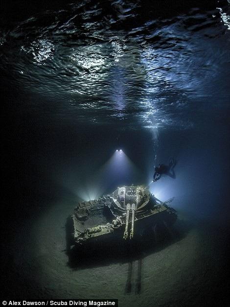 Thổi bay tâm trí với những bức ảnh chiến thắng trong cuộc thi ảnh dưới nước - 4