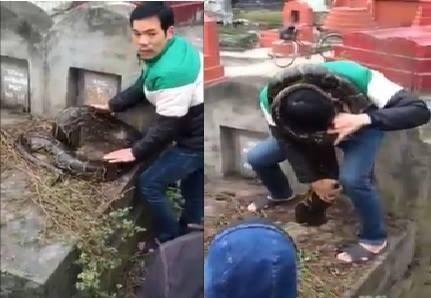 Người dân thôn Trai Trang, thị trấn Yên Mỹ (Hưng Yên) bắt được trăn khủng khi con trăn đang chui xuống một ngôi mộ (Ảnh cắt từ clip).
