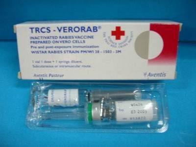 Bộ Y tế khẳng định cung ứng đủ vắc xin phòng dại tại TP HCM - 1