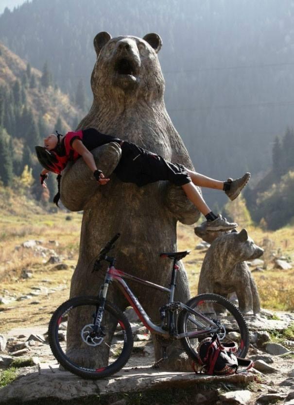 """""""Ôi không, mình đã làm gì thế này?"""", chú gấu thốt lên"""