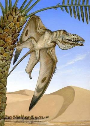 Phát hiện một loài động vật bay thống trị bầu trời nguyên thủy - Ảnh 1.