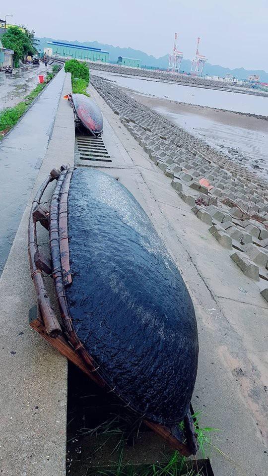 Thuyền nhỏ được người dân tại thị trấn Cát Hải đưa lên bờ